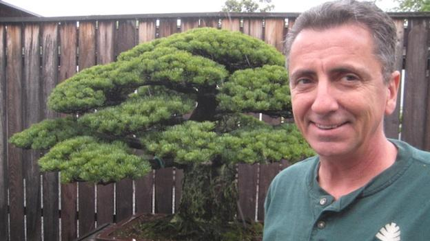 Jack Sustic has been the curator of the Bonsai and Penjing Museum at the National Arboretum since 2002.  He has been caring for Bonsai trees since 1987.