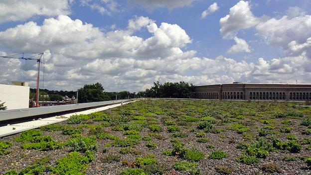 Shaw Library in Washington, D.C. is one of many buildings in the city that has a green roof.