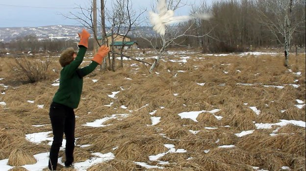 This photo provided by The Raptor Center at the University of Minnesota shows Julia Ponder, D.V.M., executive director of The Raptor Center at the University of Minnesota, releasing a snowy owl Saturday April 19, 2014, just outside of Superior, Wis.