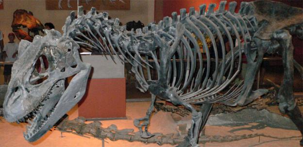 The proposed new dinosaur hall could be the new home of the Smithsonian's prehistoric favorites, including the Allosaurus, pictured.