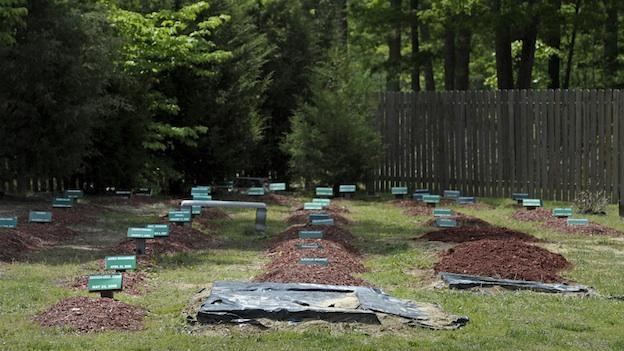 The Al-Barzakh Islamic Cemetery where Boston bombing suspect Tamerlan Tsarnaev is buried in Doswell, Va., Monday, May 13, 2013.\