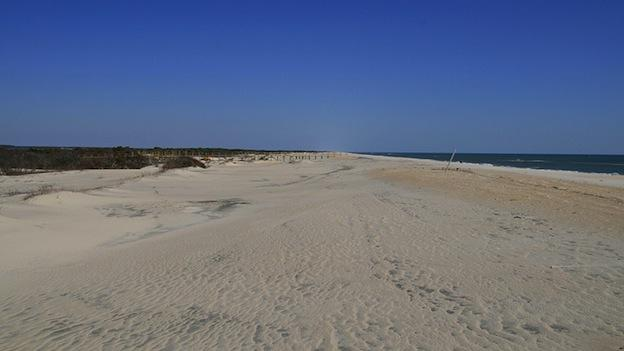 Assateague Island National Seashore is a unit of the National Park Service occupying much of Assateague Island along the Atlantic coast of Maryland and Virginia.