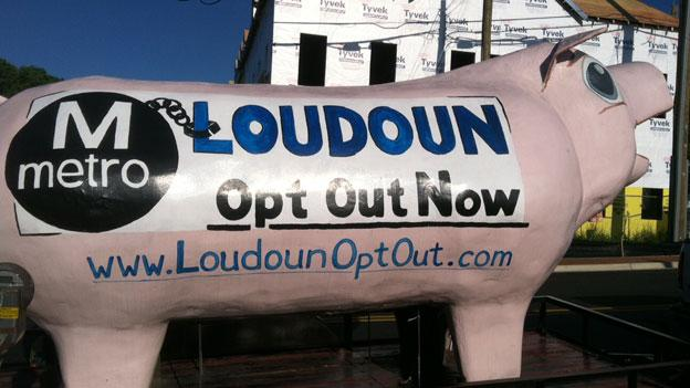 A pig serves as a protest to Loudoun's continued participation in the Silver line.