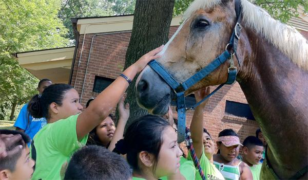 Kids at Montgomery County's Police Adventure Camp greet a police horse.