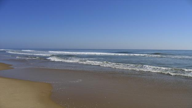 The Nature Resources Defense Council named Ocean City, Md. as one of the cleanest beaches in the nation.