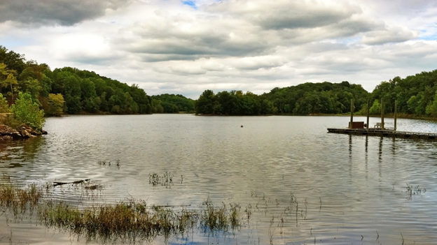 A toxin produced by algae has rendered Lake Needwood off-limits for swimming.