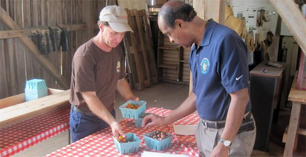 Woody Woddruff, the founder of the Red Wiggler Community Farm in Germantown, Md., shows off his cherry tomatoes to County Exec Isiah Leggett.