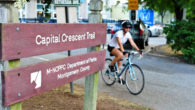 The proposed Purple Line would require deforestation of areas around the Capital Crescent Trail, which are also reportedly habitats of several species of endangered amphipods.