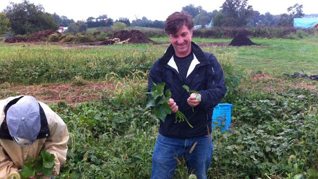 Founder and executive director Woody Woodroof gathers sweet potato greens at Red Wiggler Farm.