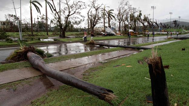Fallen palm trees lie on a road after the hurricane Sandy in Santiago de Cuba, Cuba, Thursday Oct. 25, 2012. Hurricane Sandy blasted across eastern Cuba on Thursday as a potent Category 2 storm and headed for the Bahamas after causing at least two deaths in the Caribbean.