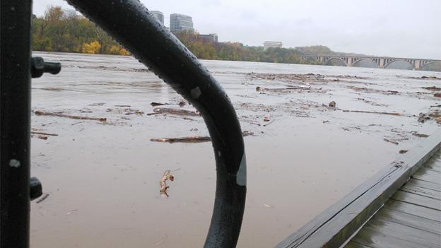 Waters were murky in the D.C. area, from the boardwalk in Georgetown, shown here, to the watershed in Maryland.