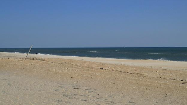 The vast Atlantic ocean beyond the sand dunes of Assateague Island National Seashore in Maryland.
