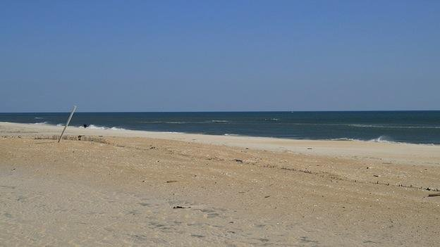 Assateague State Park has some mighty clean water.