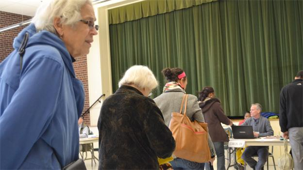 Voters in Alexandria wait in line to vote.