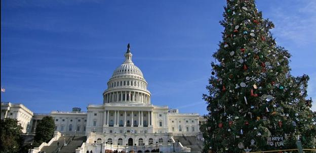 The 2007 Capitol Christmas tree, looking majestic in front of the Capitol. The tree for 2011 is currently en route.