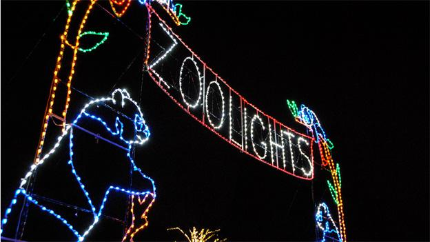 The ZooLights display depicts the zoos colorful inhabitants in equally colorful LED lights.