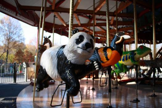 A giant panda, Baltimore oriole and red-eyed tree frog on the Conservation Carousel.
