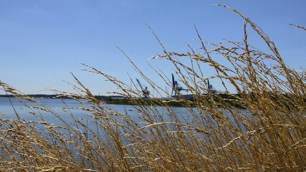 Reducing water pollution in the Chesapeake Bay has come in fits and starts.