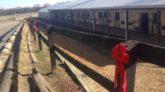 Woodlawn Stables faces an uncertain future.
