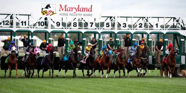 The state has seen a 13 percent increase in Maryland-bred mares and a 23 percent increase in new stallions for the 2014 breeding season.