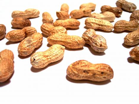 A salmonella outbreak that caused at least nine deaths and made about 700 ill, was traced to peanut plants in Georgia and Texas.