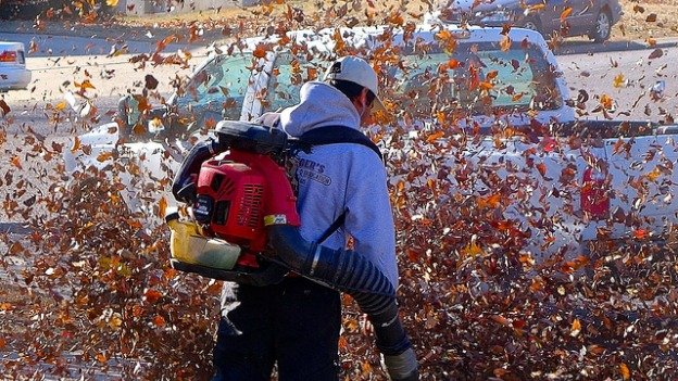 Some residents in D.C.'s Ward 3 say that the annual deployment of leaf-blowers is an assault on their senses.