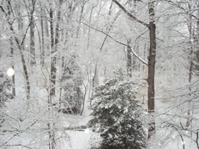 Bethesda, Maryland.