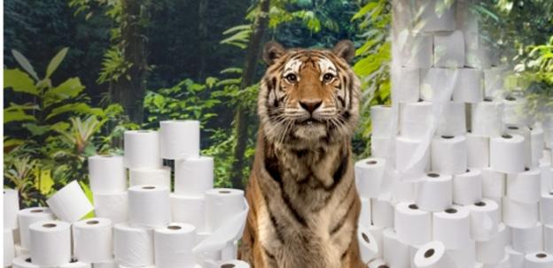 A paper company with a footprint in Virginia is being taken to task by the World Wildlife Fund for reports that there are fibers in its paper products from Indonesian rainforests that serve as tiger sanctuaries.