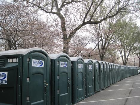 With great blossoms comes great port-a-potties...