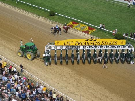 Workers prepare the starting gate for the main race at the 135th running of the Preakness Stakes.