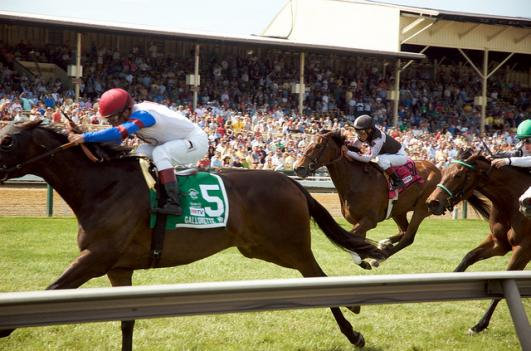 The Maryland Jockey Club in part owns the Pimlico racetrack, which is known for hosting the annual Preakness Stakes.