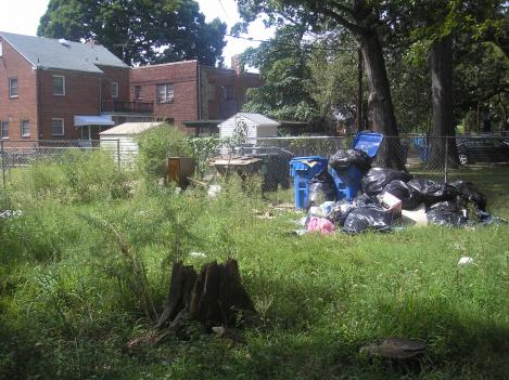 In the backyard of the four-unit building, a year's worth of trash attacks cockroaches and flies. As the property's titleholder, IndyMac Federal Bank is required to haul away the trash for a building of this size.