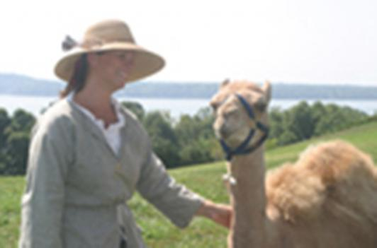 Mount Vernon holds unique holiday views and events, including camel visits, Through January 6th, 2009.