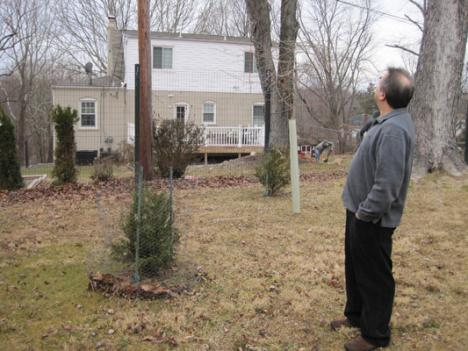 Michael Sandler surveys his property, most of which he is not allowed to maintain by Montgomery County law.