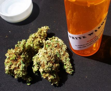 Under current Maryland law, using marijuana with a medical excuse is limited to a $100 fine.