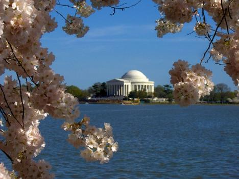 The Cherry Blossom Festival and D.C.'s monuments are two of the draws for tourists every year. The city is reporting that 15.5 million people visited the District last year.