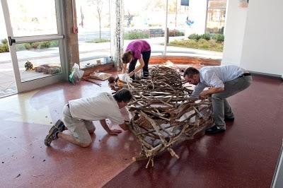 Group nest installation.