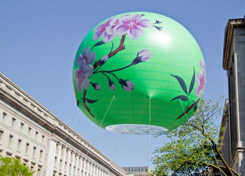 A scene from the 2010 Cherry Blossom Festival parade.
