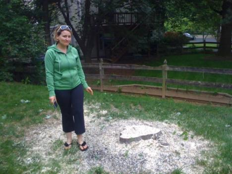 Soumaya Charfi moved to her neighborhood in Rockville because of the trees. Friday, Columbia Gas Transmission had trees cut down as part of gas pipeline maintenance.