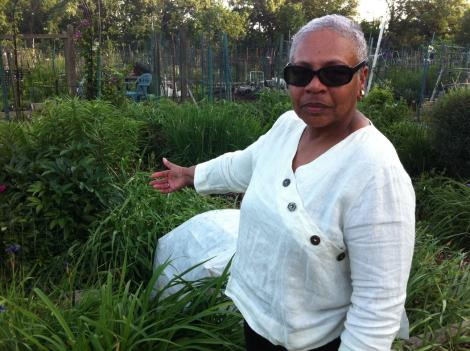 Gardener Linda Blount Berry says a thief stole 160 peony stems from the garden this year and $8,000 in flowers, fruits and vegetables over the past decade.