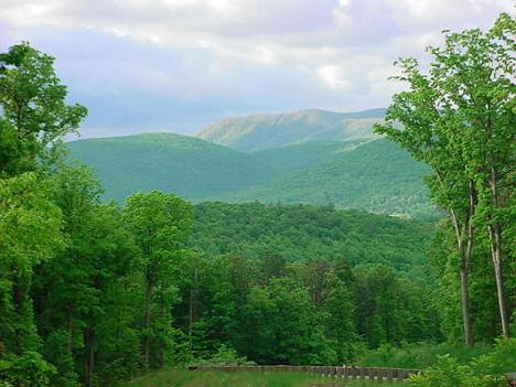 A view of Shenandoah River State Park, one of Virginia's state parks.