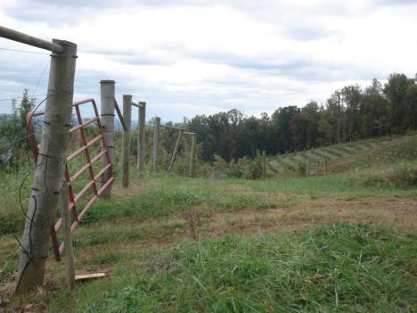 The use of biosolids in Virginia farms has some residents worried.