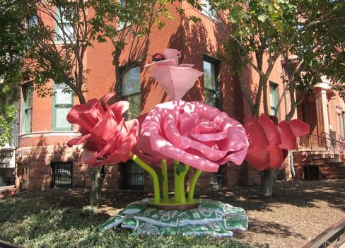 Will Ryman's steel and fiberglass rose is planted at Phillips Collection through early 2012.