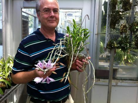 U.S. Botanic Garden Botanist Kyle Wallick shows off an orchid at the Southwest facility.