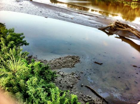 A secondary water assessment showed no signs of oil in the substance found in the Anacostia River earlier this week.
