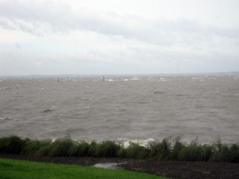 The view of the choppy waters of the Chesapeake Bay from Kent Island. A small group peered through binoculars here Sunday, looking for tropical birds displaced by the hurricane.