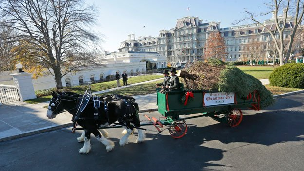 The official White House Christmas Tree is delivered to the North Portico of the White House in Washington, Friday, Nov. 29, 2013.