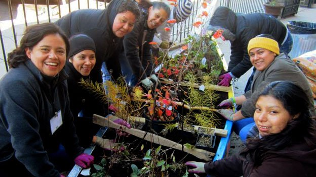 Members of the Bird Ambassadors program painted and planted a broken canoe at a Baltimore charter school in November. The canoe was filled with species native to Maryland, providing food and habitat for local birds.
