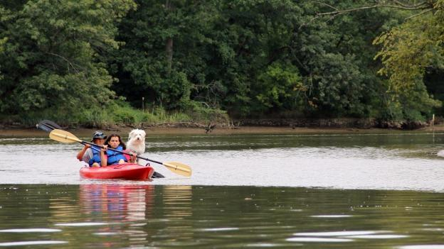 A couple and their dog kayak down the Anacostia River, a natural getaway hidden in plain sight in the densely populated area between D.C., Prince George's County and Montgomery County.