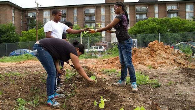 Participants in Eco City's summer youth program planting the first season at the new farm at Autumn Woods Apartments in Bladensburg, Md.